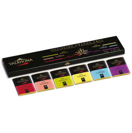 6 bitar choklad avsmakning presentförpackning – Valrhona